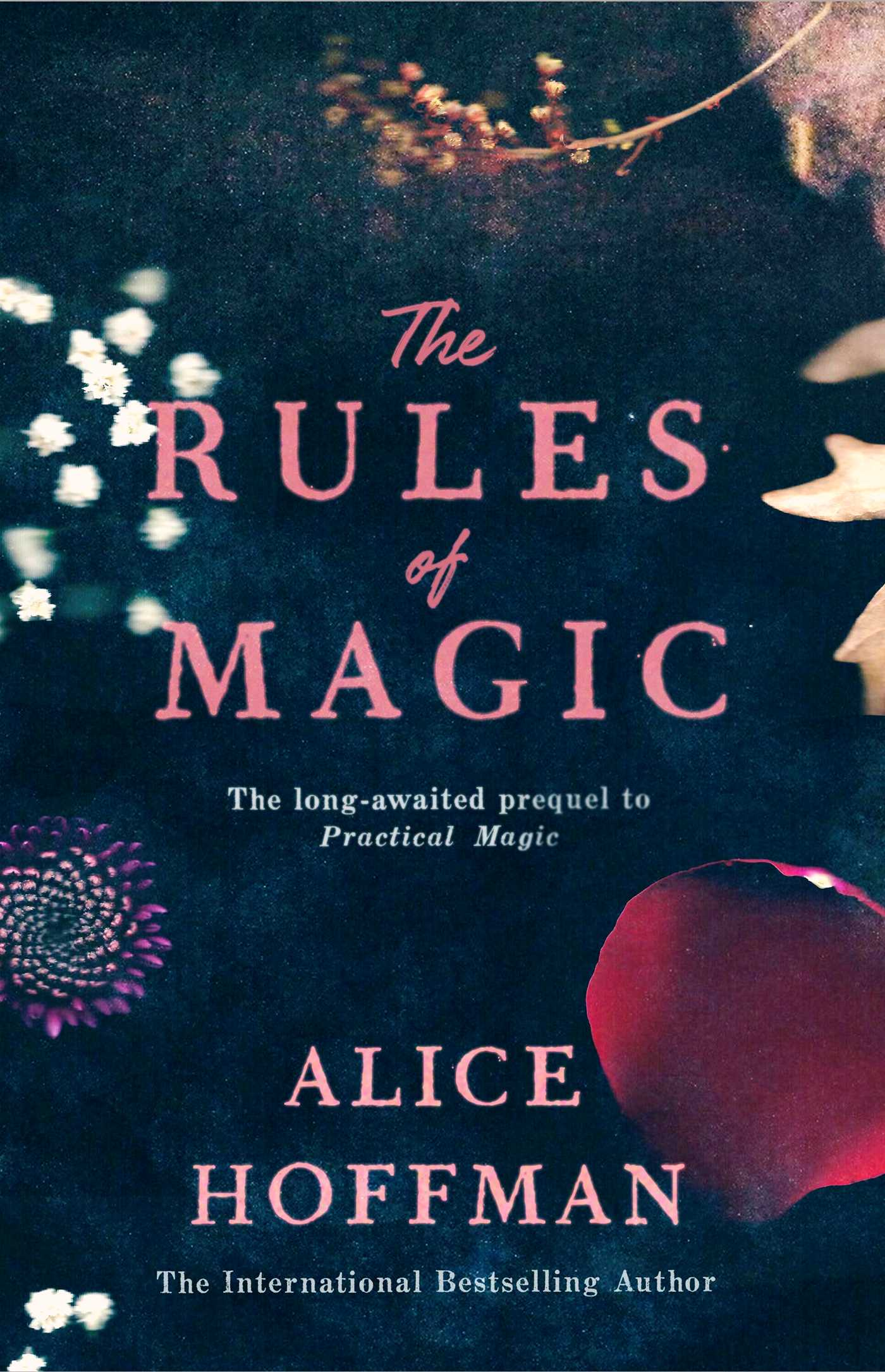 The rules of magic 9781471157677 hr