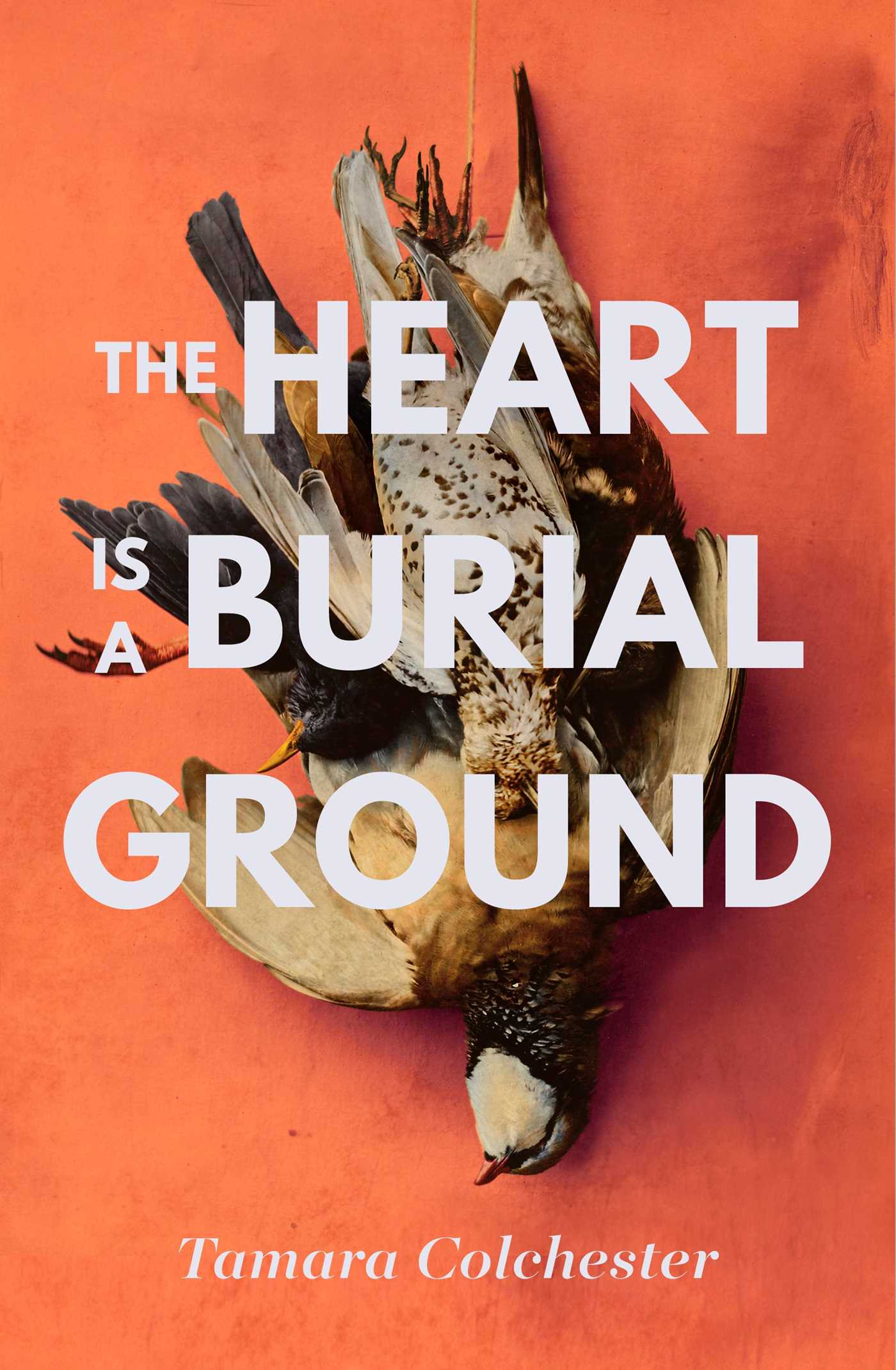 The heart is a burial ground 9781471165726 hr