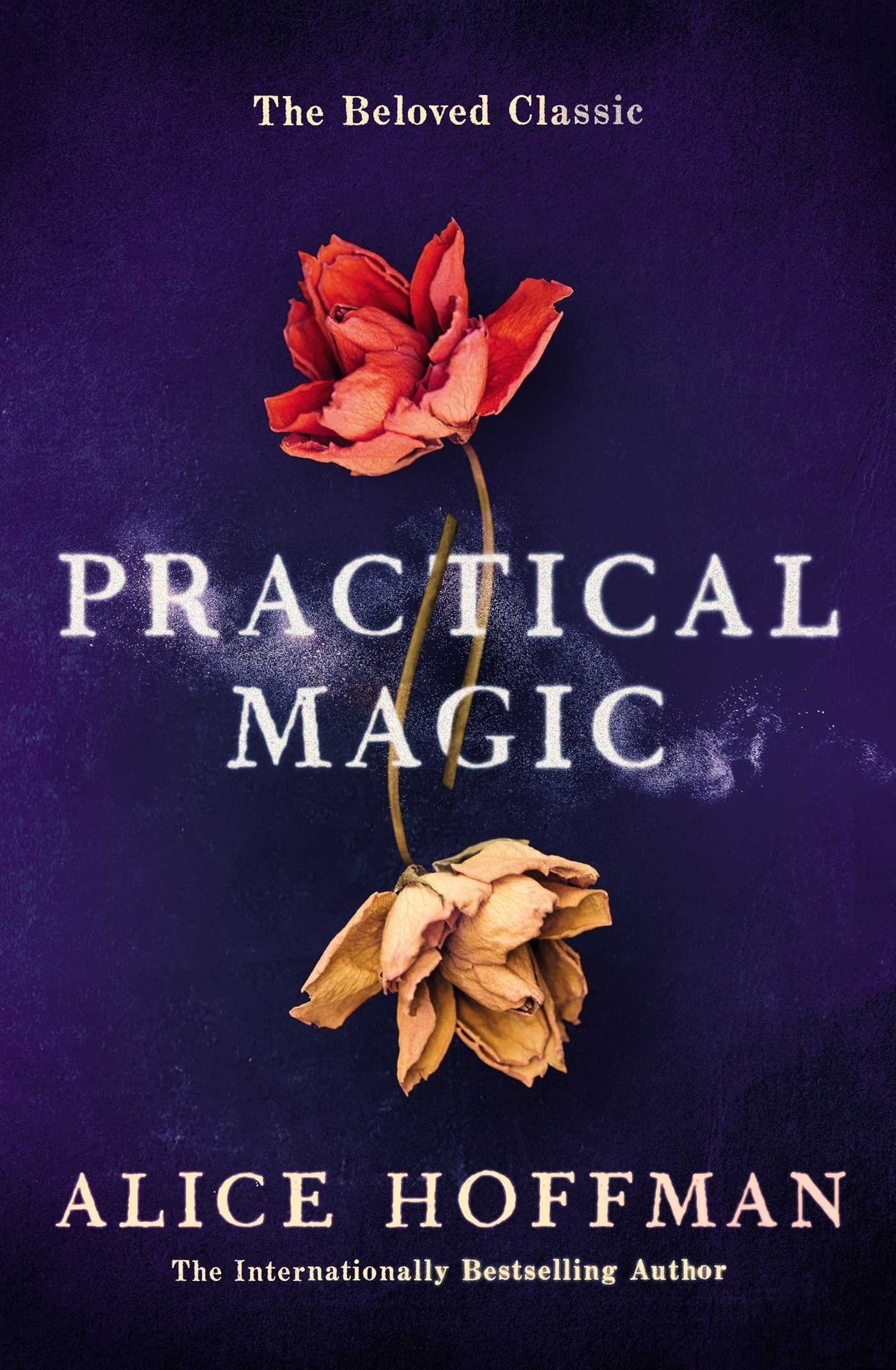 Practical magic 9781471169199 hr