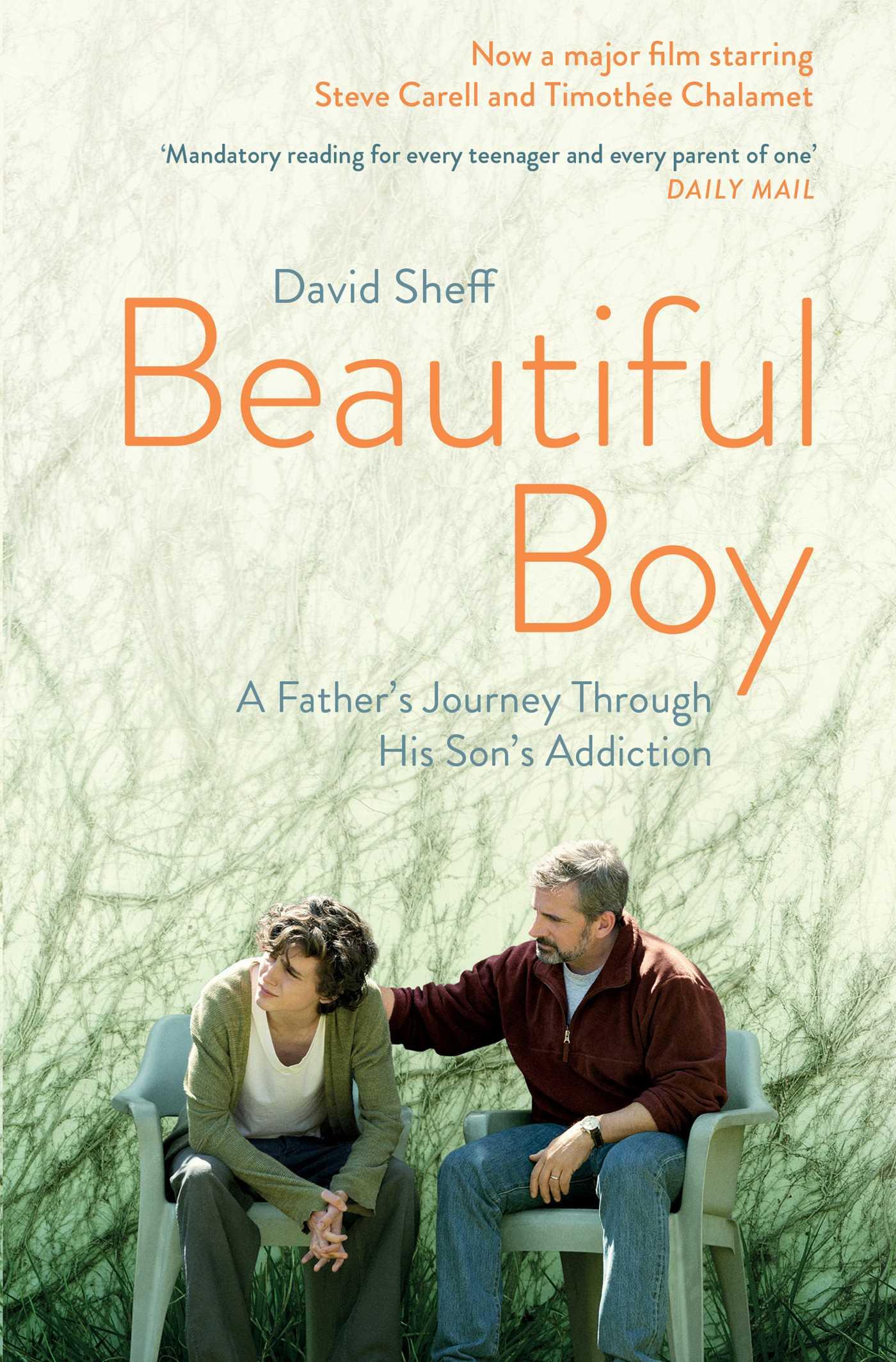 Beautiful Boy | Book by David Sheff | Official Publisher