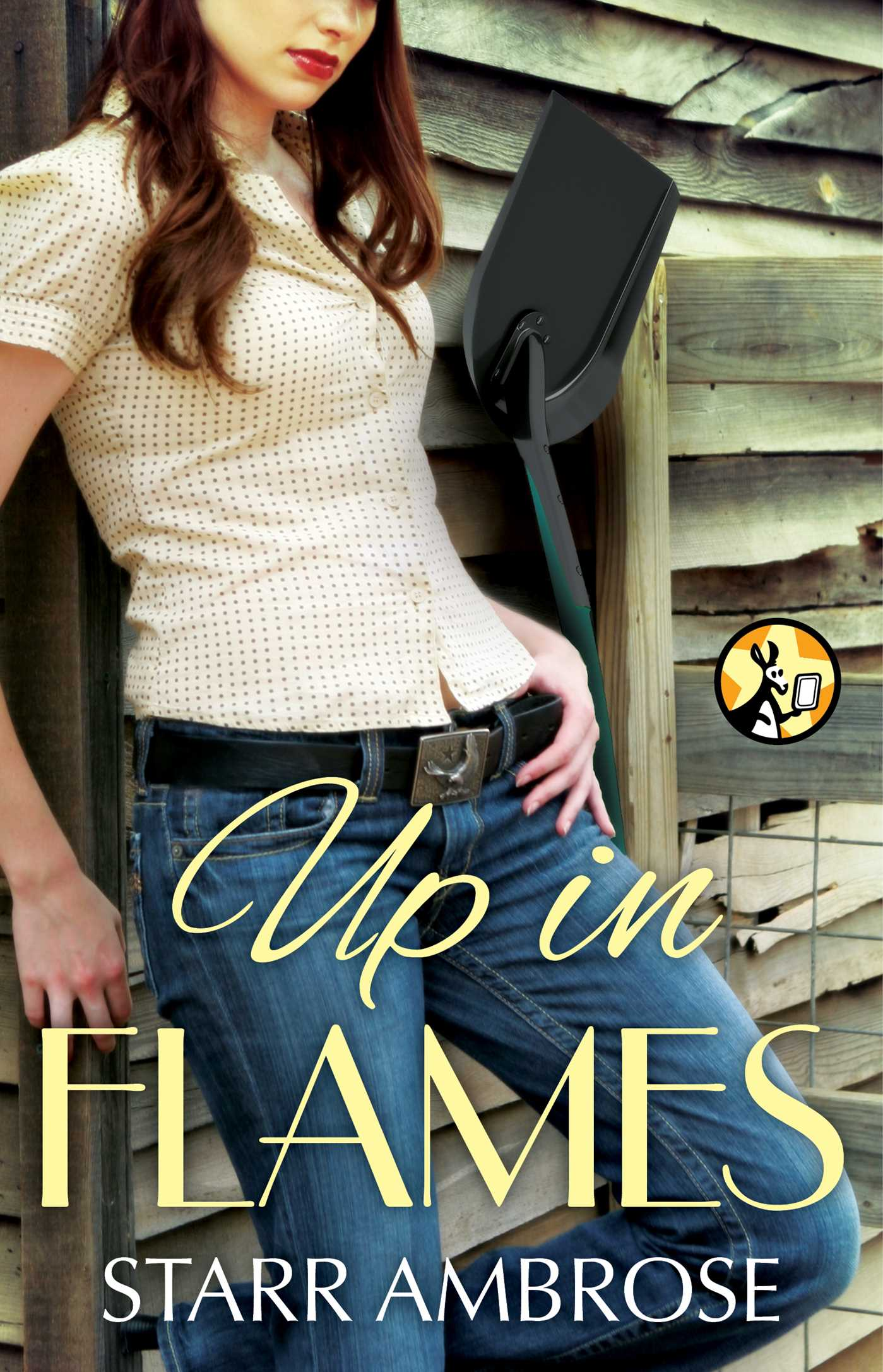 Up in flames 9781476716114 hr