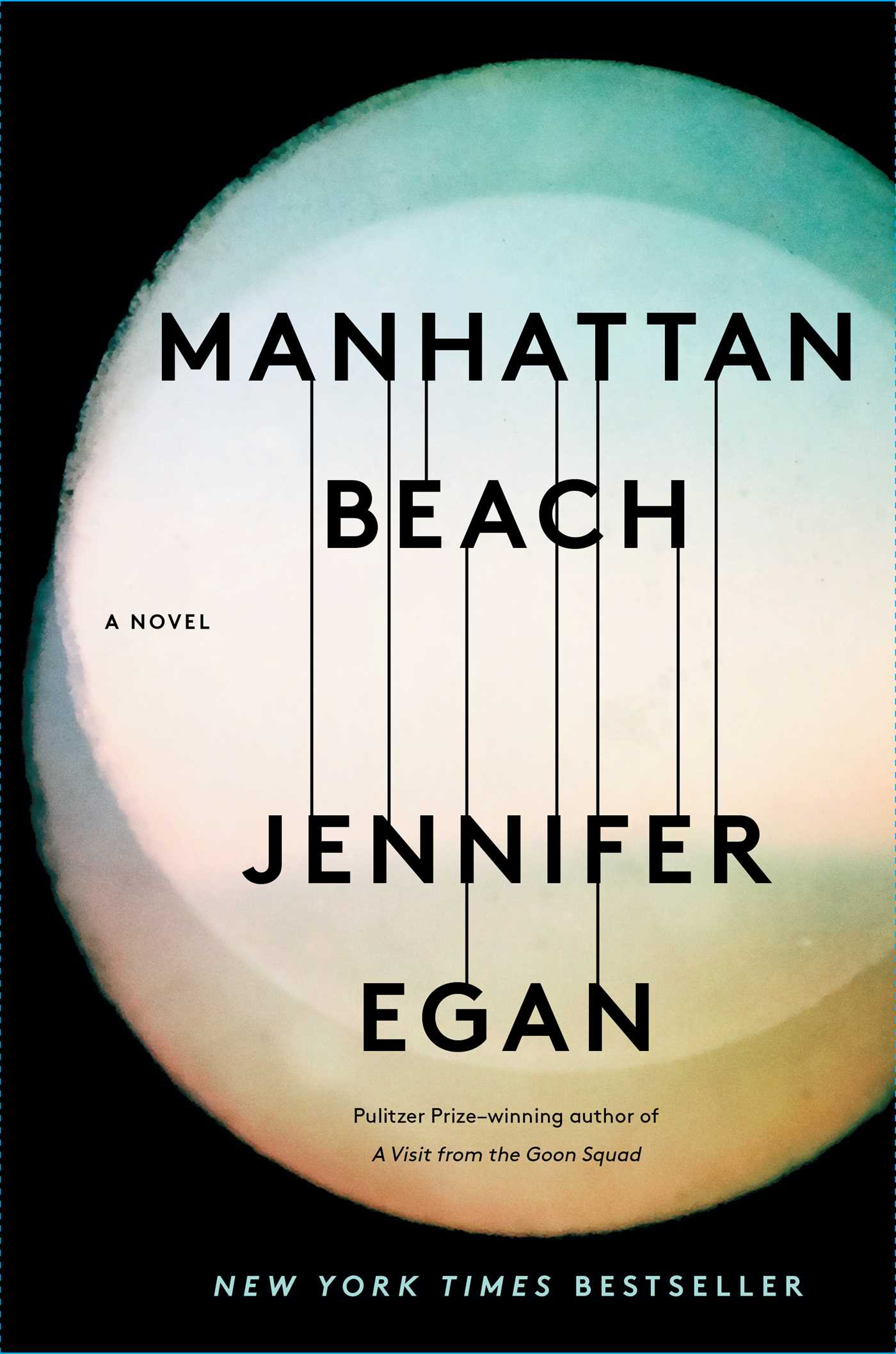 Image result for manhattan beach book