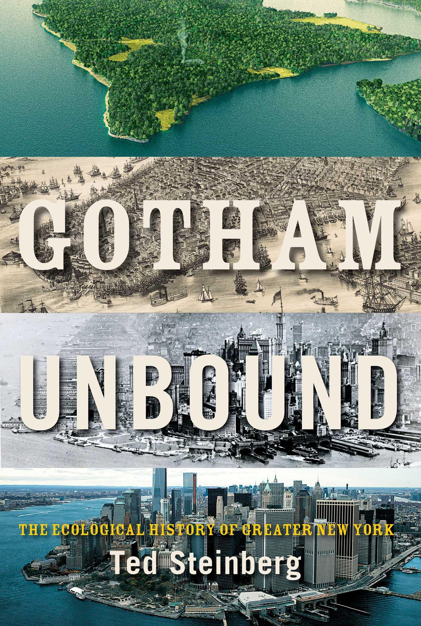 Gotham unbound 9781476741246 hr