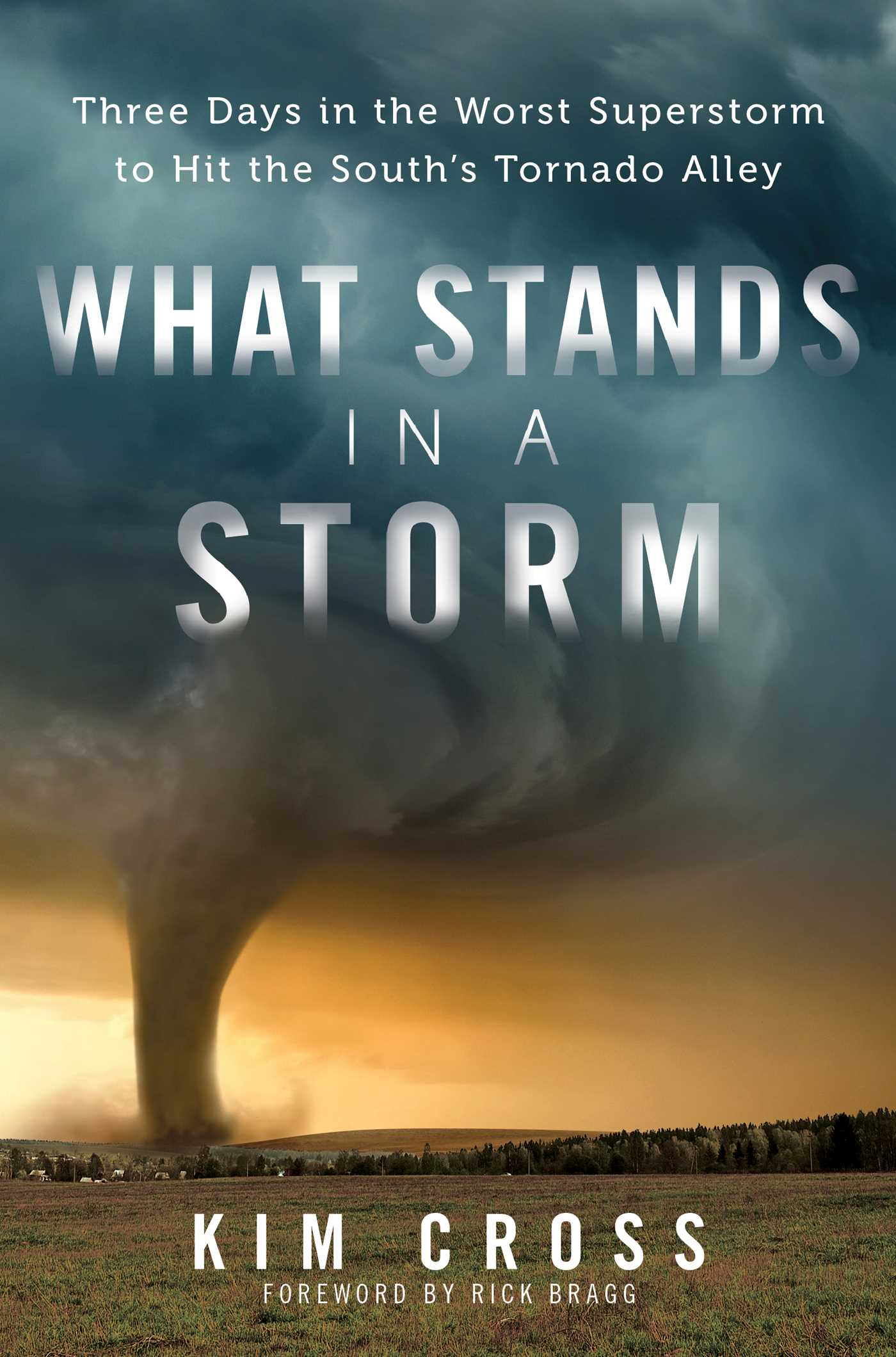 What stands in a storm 9781476763064 hr