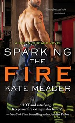 Sparking the Fire book cover