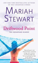 Driftwood Point book cover