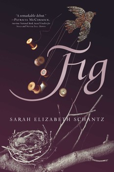 Fig book by sarah elizabeth schantz official publisher page fig fandeluxe Choice Image