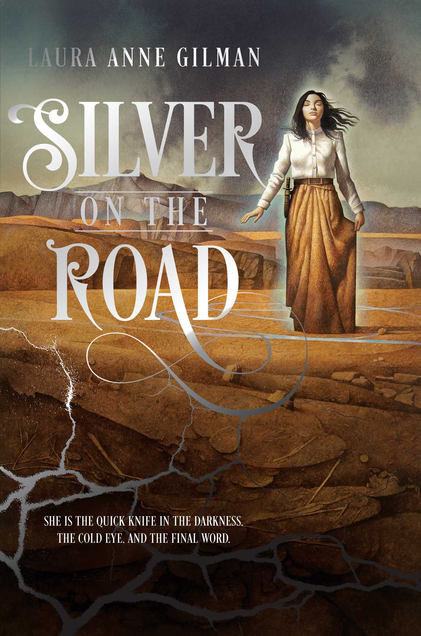 Silver on the road 9781481429689 hr
