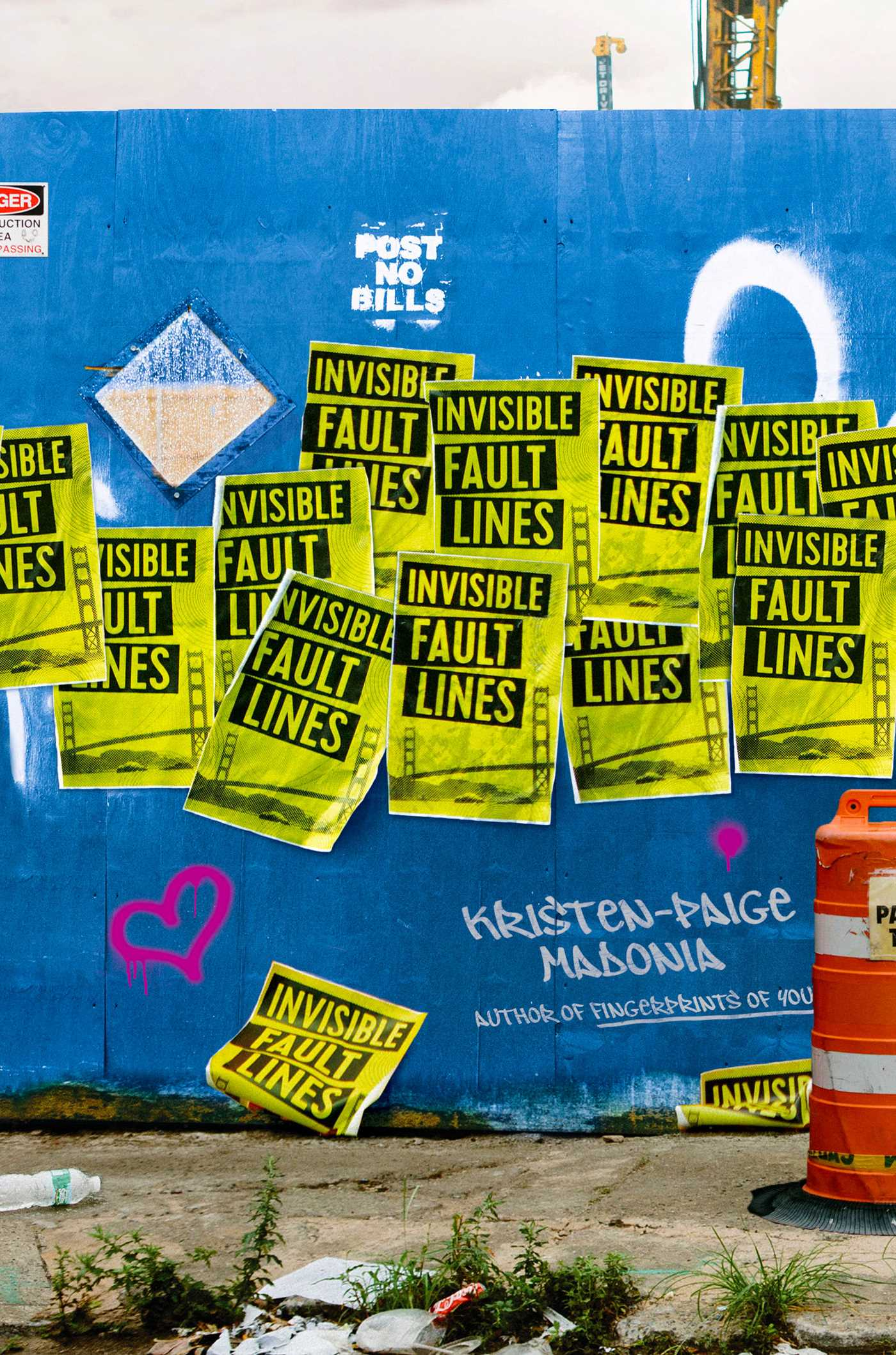 Invisible fault lines 9781481430715 hr