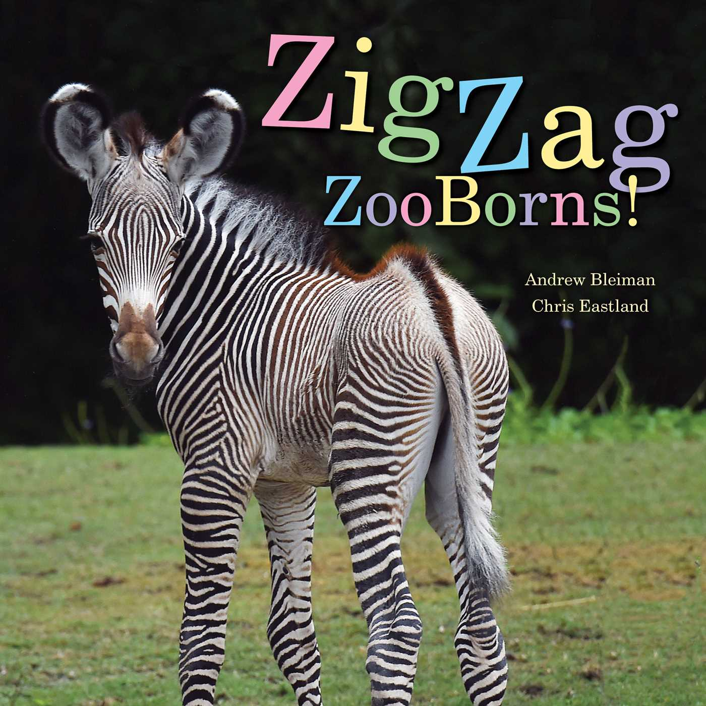 Zigzag zooborns 9781481431057 hr
