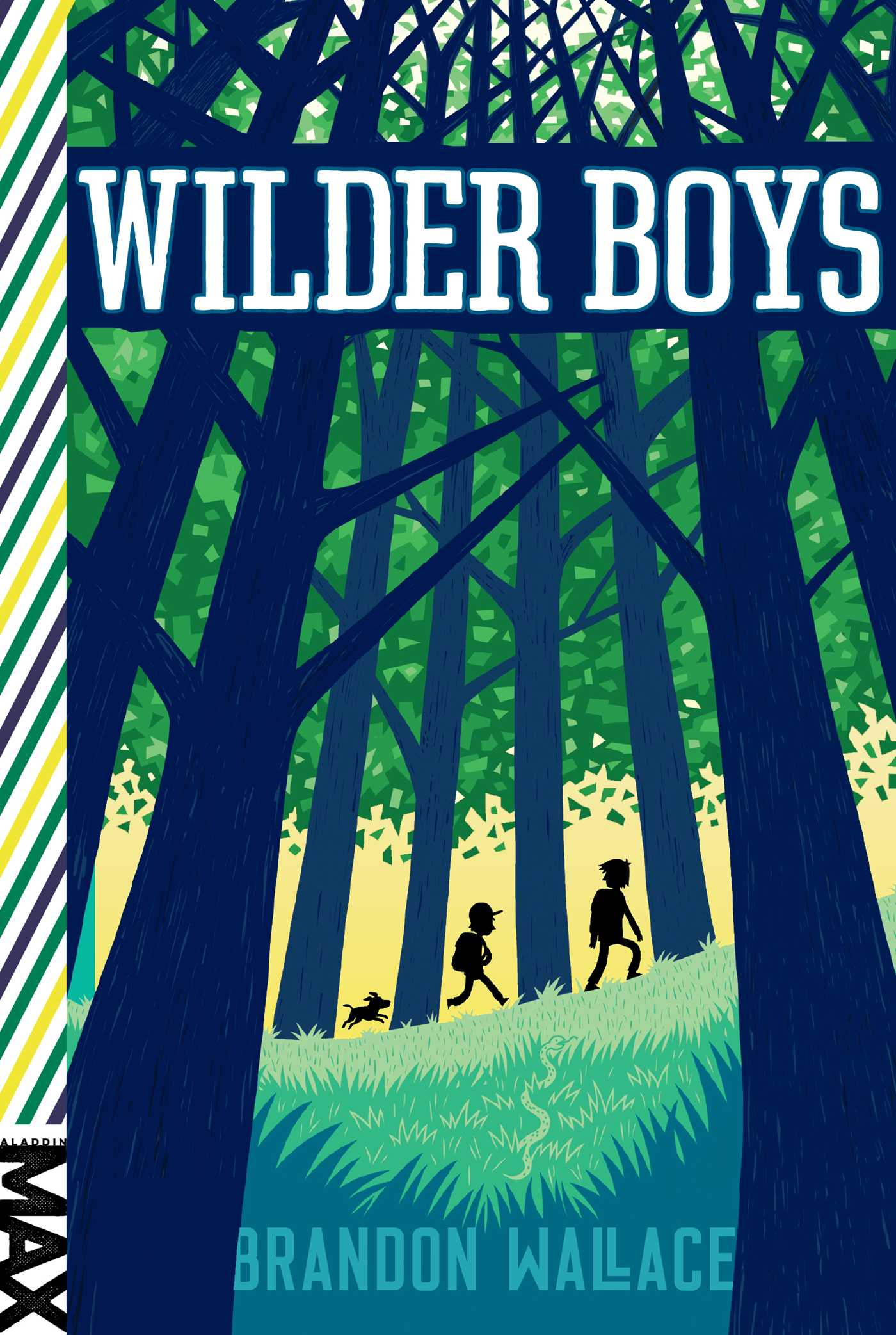 Wilder boys 9781481432634 hr