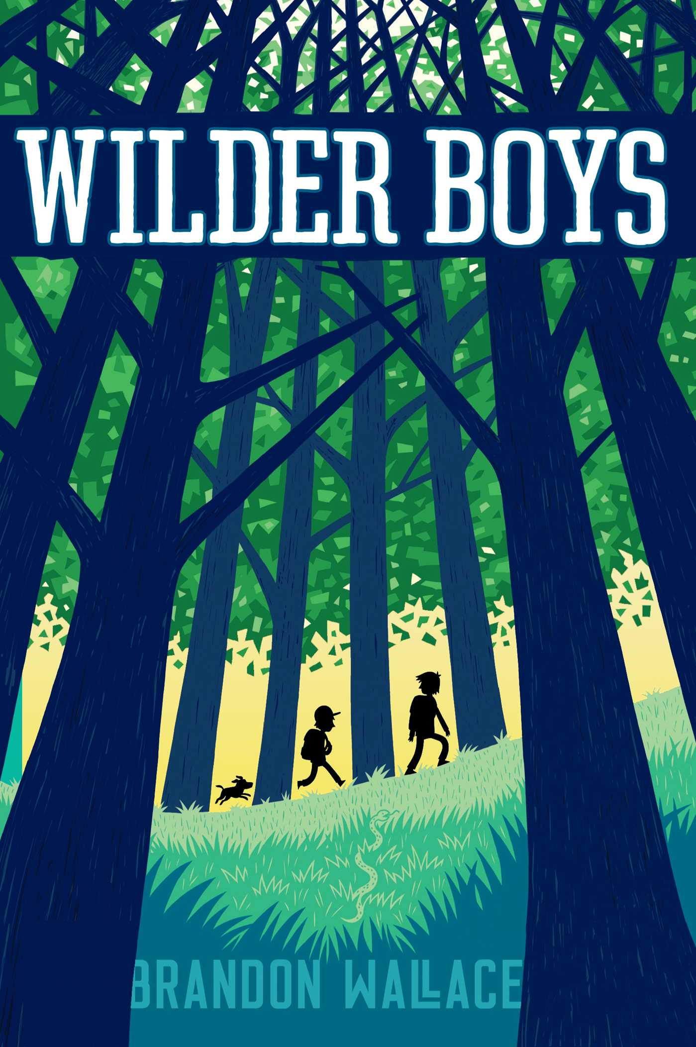 Wilder boys 9781481432641 hr