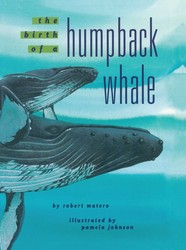 The Birth of a Humpback Whale