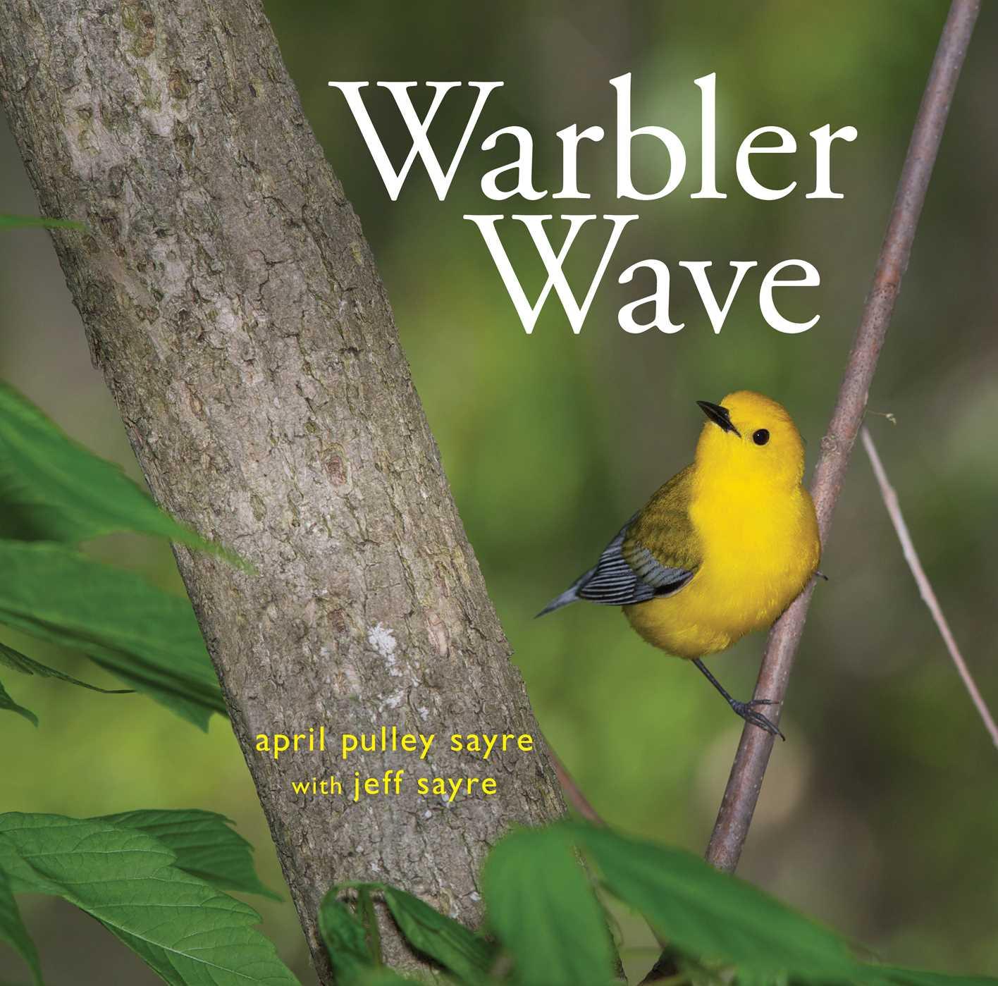 Warbler wave 9781481448291 hr