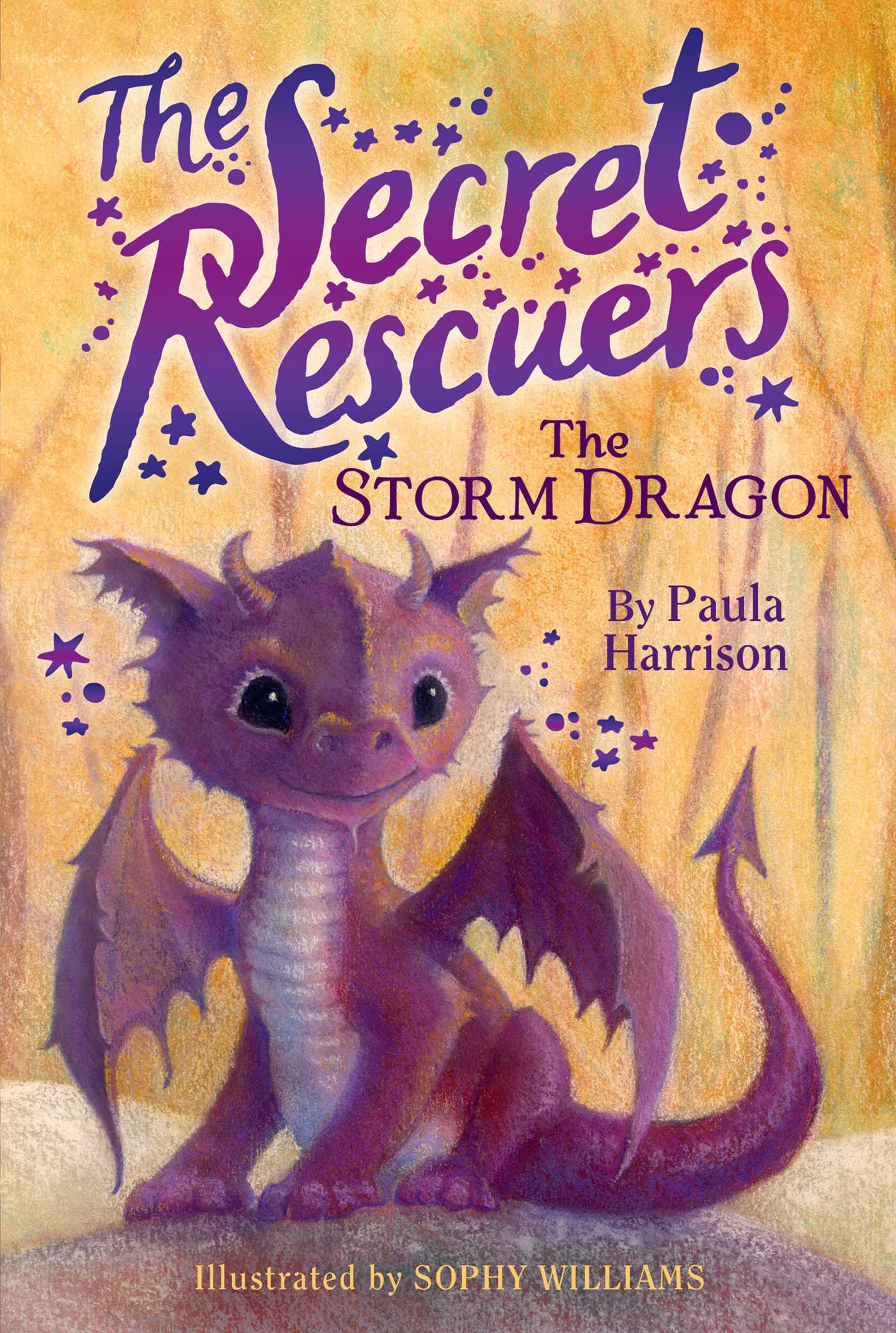 The Storm Dragon Book By Paula Harrison Sophy Williams