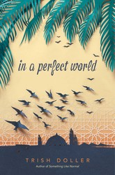 In a perfect world 9781481479882
