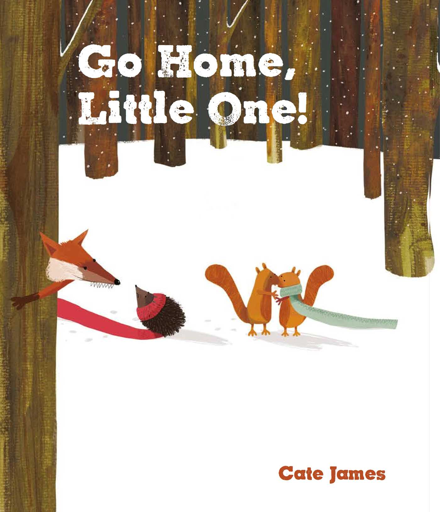 go home  little one  book by cate james official