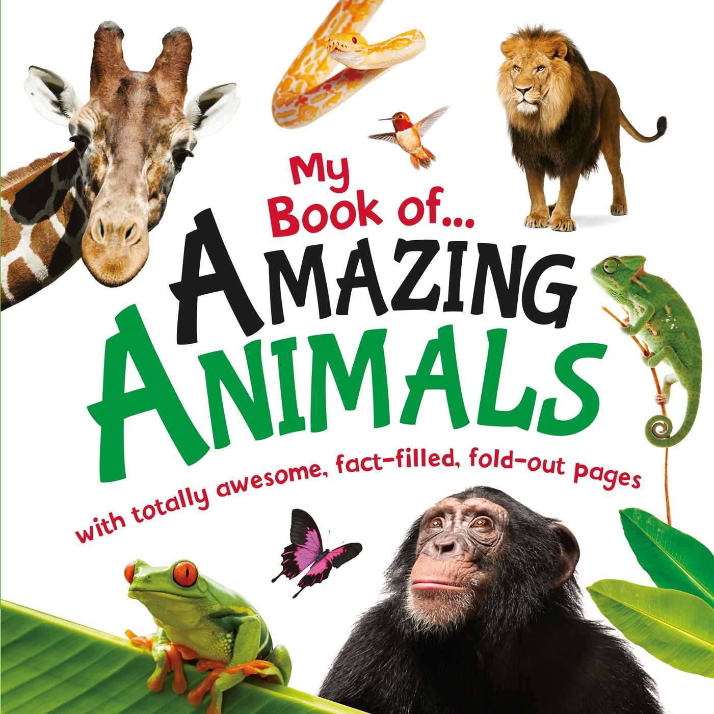 You Re Amazing Animals: My Book Of Amazing Animals