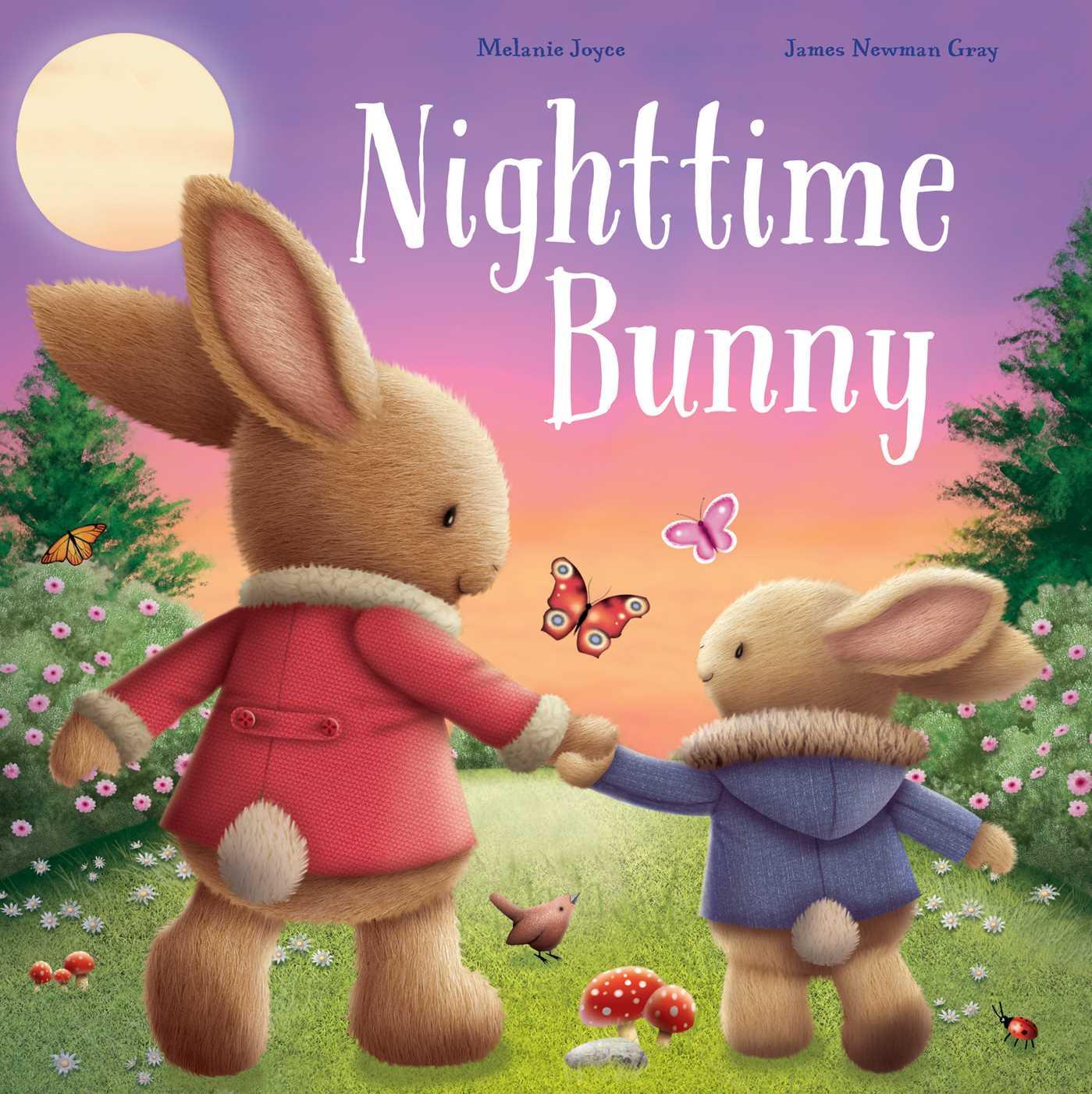 Nighttime bunny 9781499880816 hr
