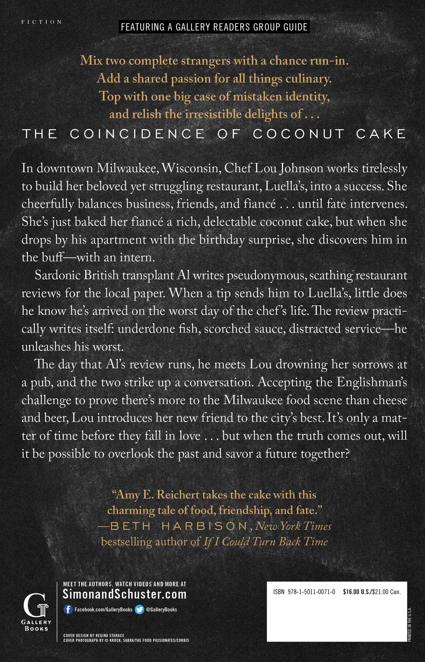 The coincidence of coconut cake 9781501100710 hr back