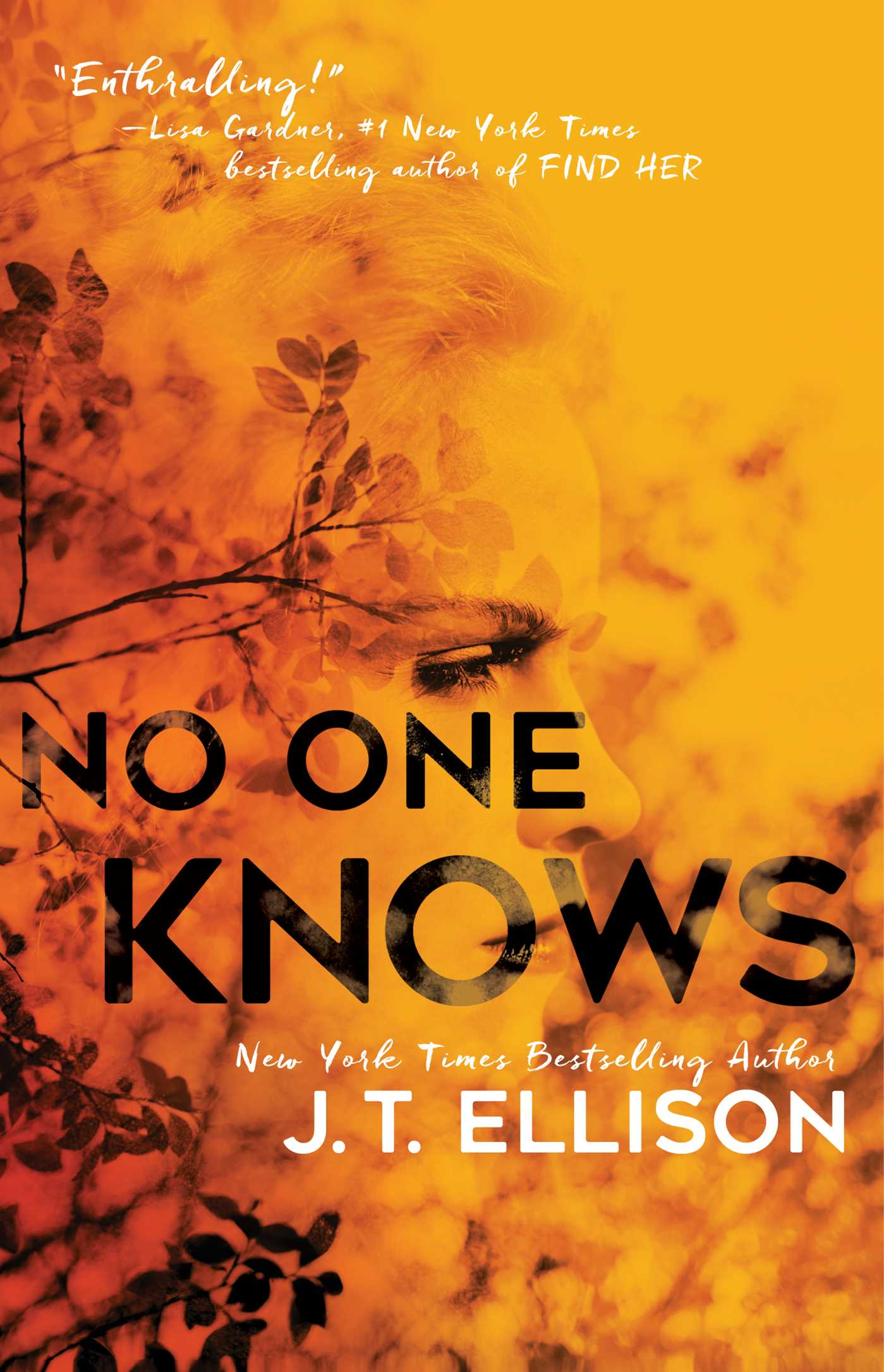 No One Knows book cover
