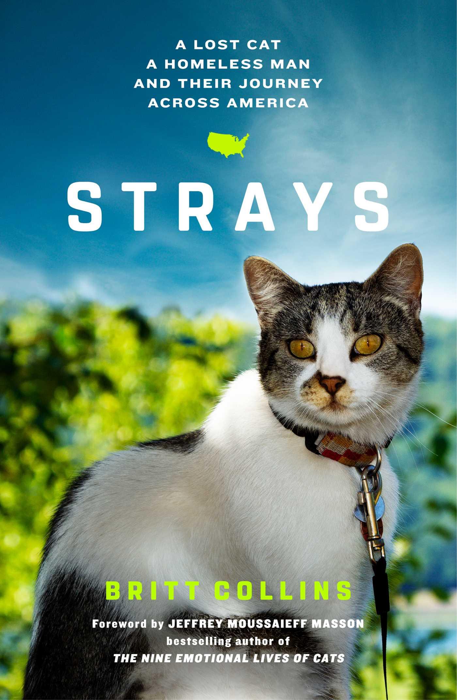 Strays 9781501122590 hr