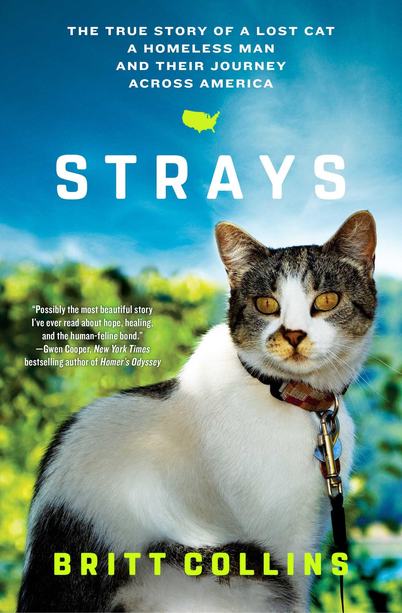Strays 9781501122606 hr