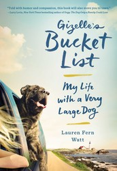 Buy Gizelle's Bucket List