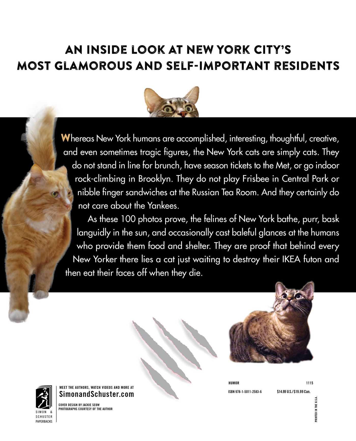 Felines of new york 9781501125836 hr back