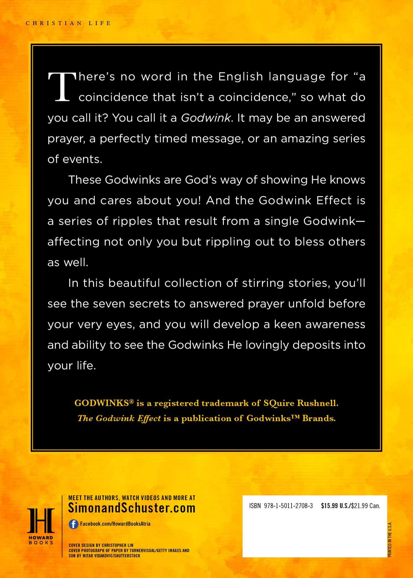 The godwink effect 9781501127083 hr back