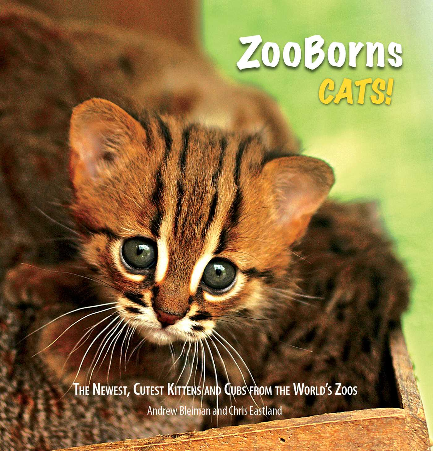 Zooborns cats 9781501131042 hr