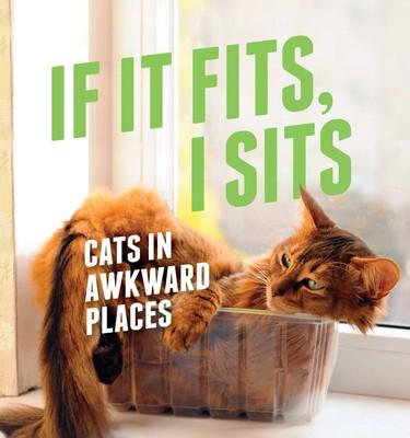 If It Fits, I Sits