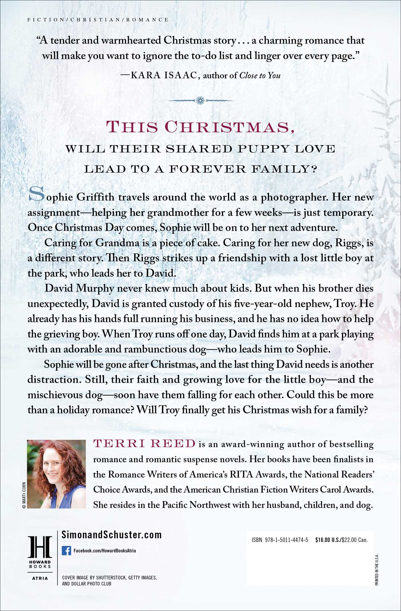 A Family Under the Christmas Tree | Book by Terri Reed | Official ...