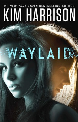 Waylaid book cover