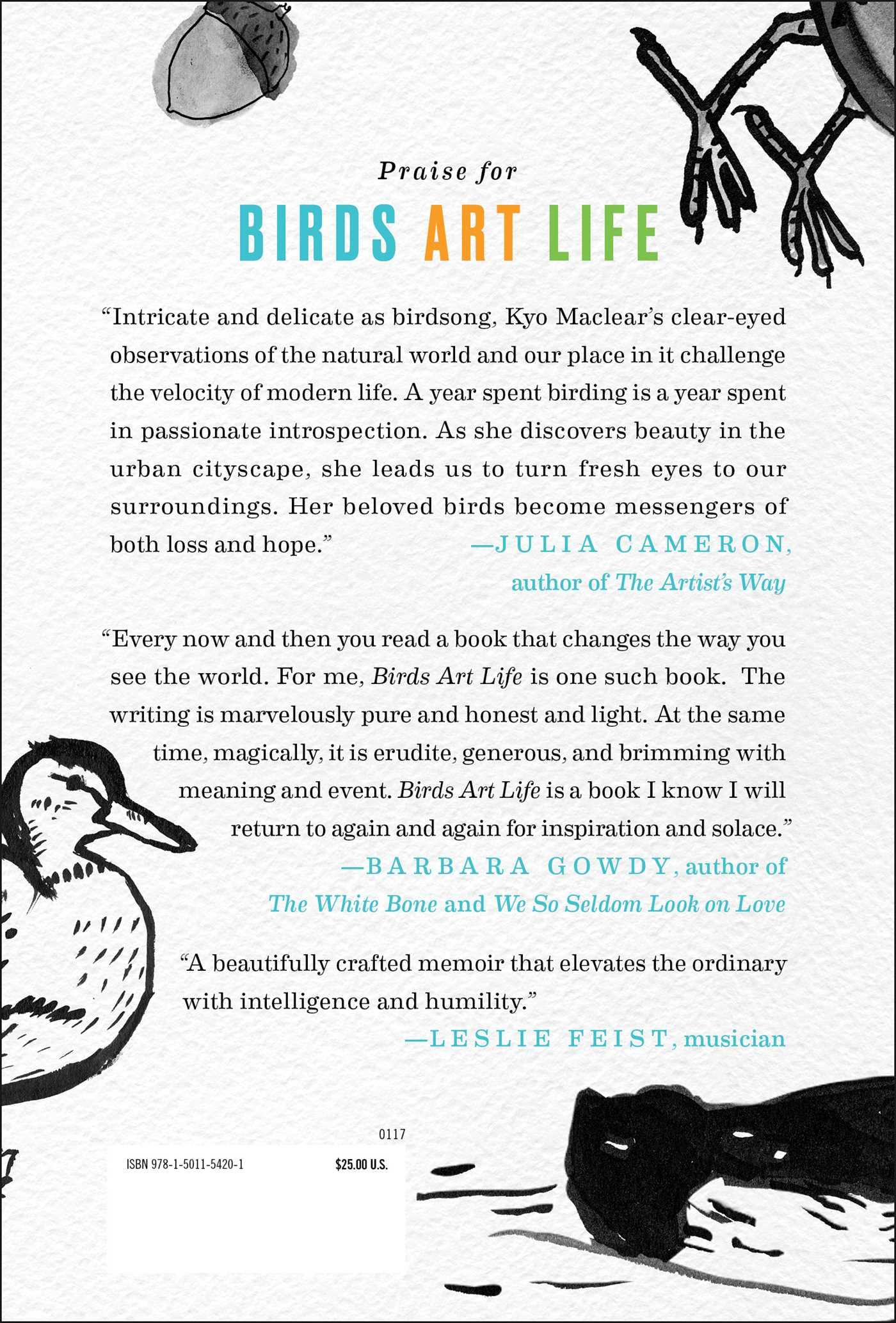 Birds art life 9781501154201 hr back