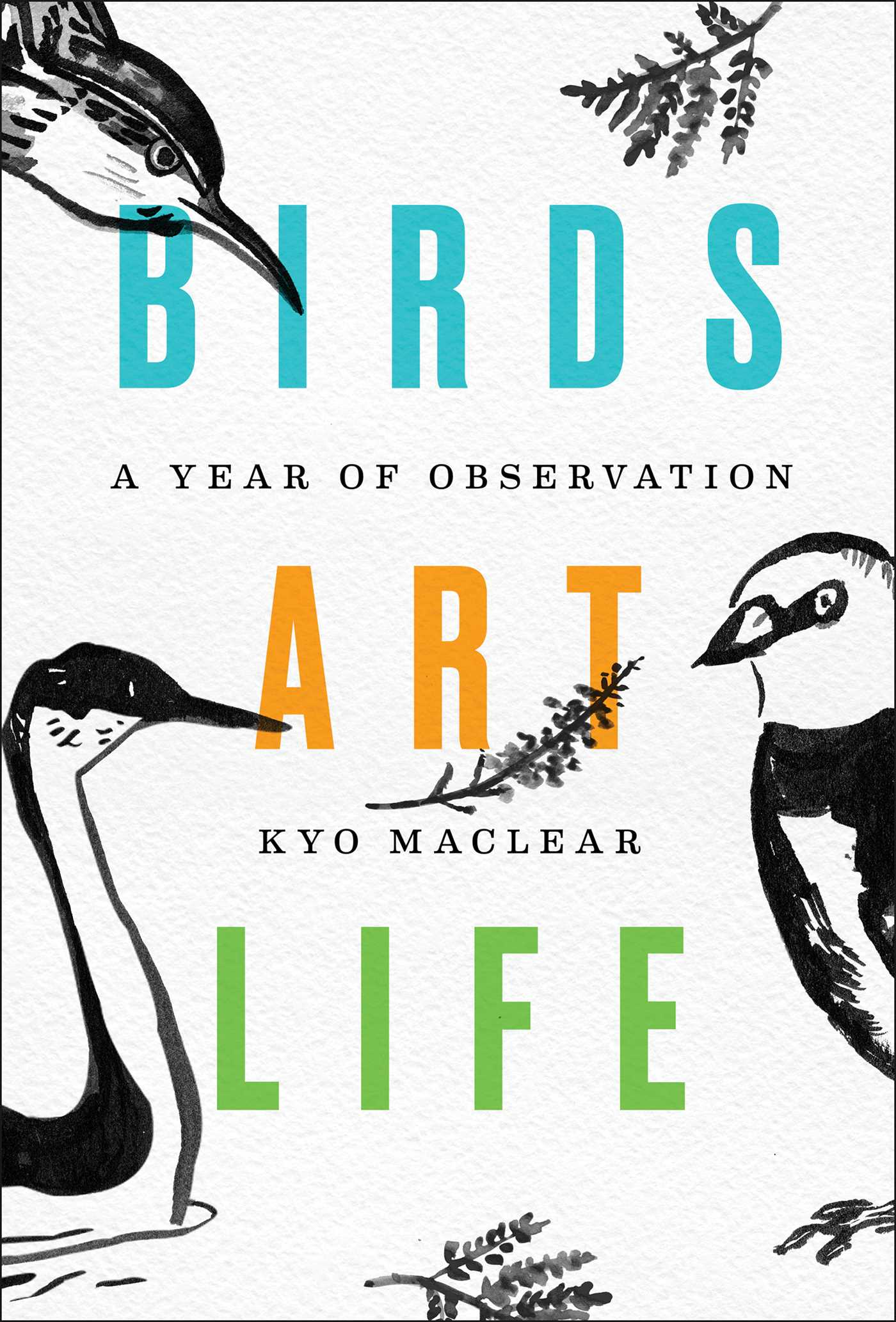 Birds Art Life | Book by Kyo Maclear | Official Publisher