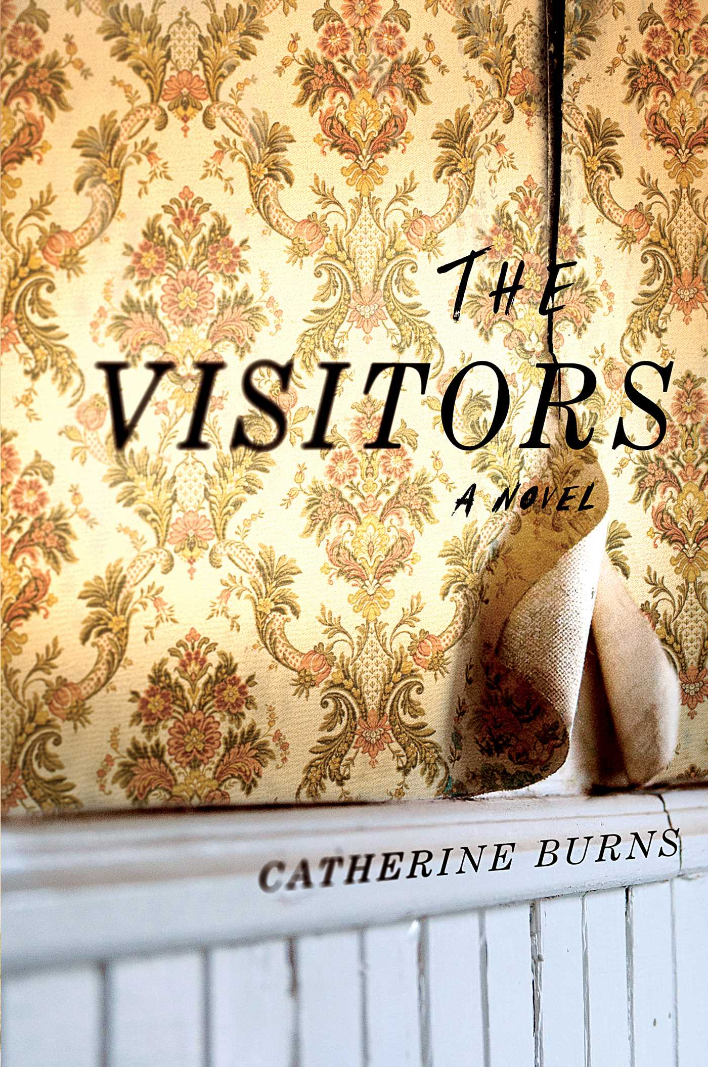 The visitors 9781501164019 hr