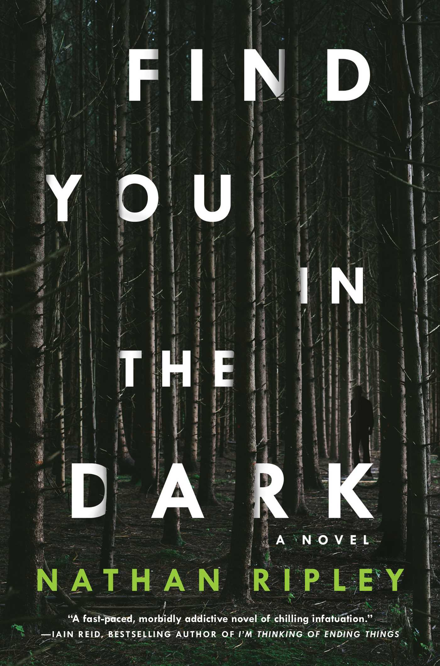 Find you in the dark 9781501178207 hr