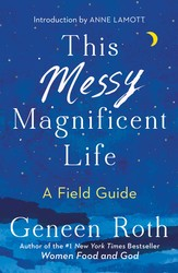 This messy magnificent life 9781501182464
