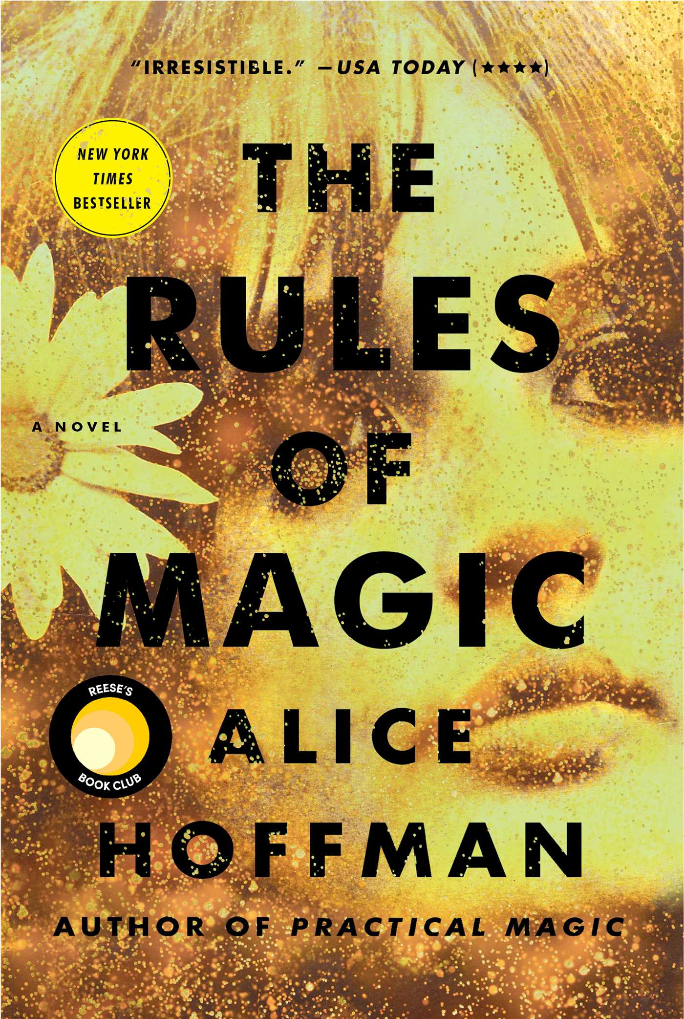 The rules of magic 9781501183874 hr