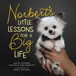 Buy Norbert's Little Lessons for a Big Life