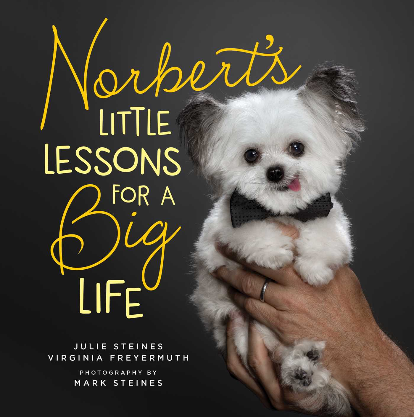 Norbert s little lessons for a big life 9781501187315 hr