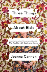 Three things about elsie 9781501187384