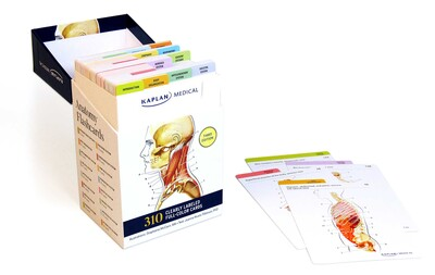 Anatomy flashcards book summary video official publisher page anatomy flashcards fandeluxe Gallery