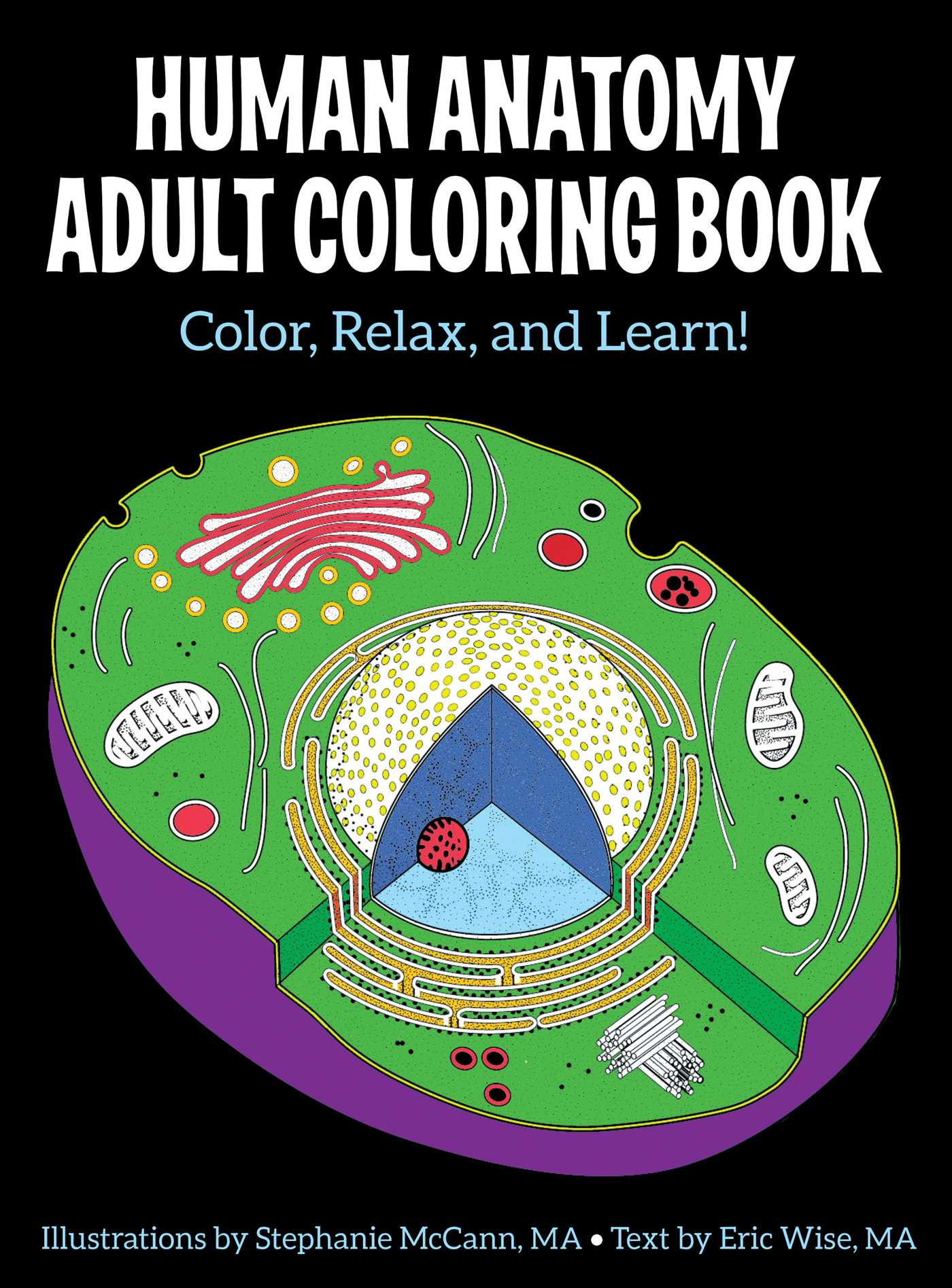 Human Anatomy Adult Coloring Book | Book by Stephanie McCann, Eric ...