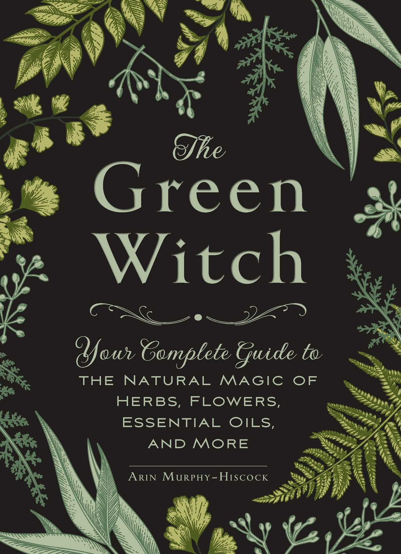 The green witch 9781507204719 hr