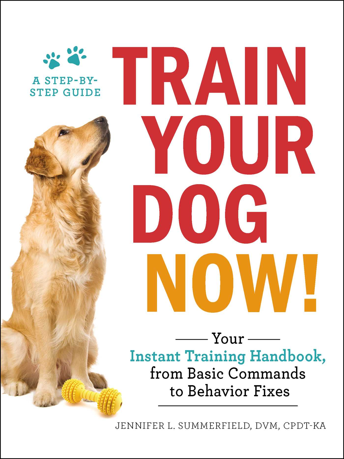 Train your dog now 9781507206973 hr