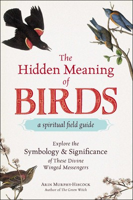 The Hidden Meaning Of Birds A Spiritual Field Guide Book By Arin