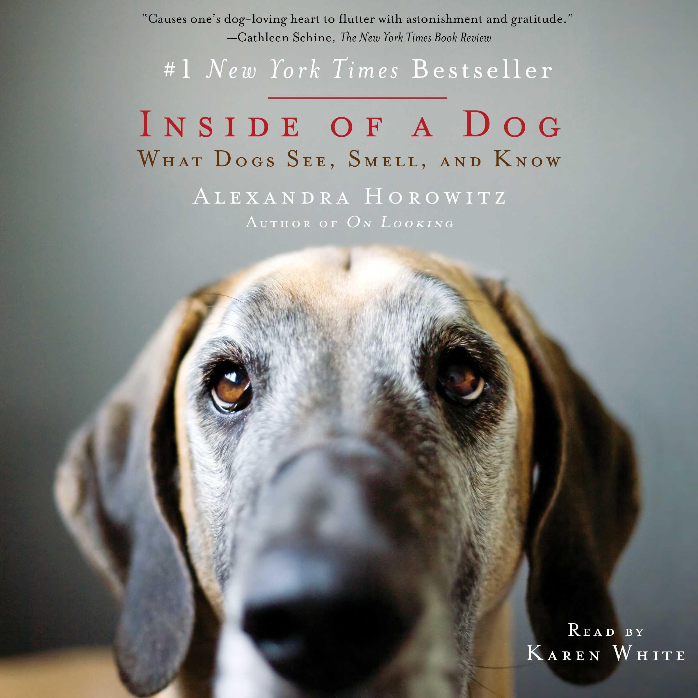Inside of a dog 9781508222675 hr