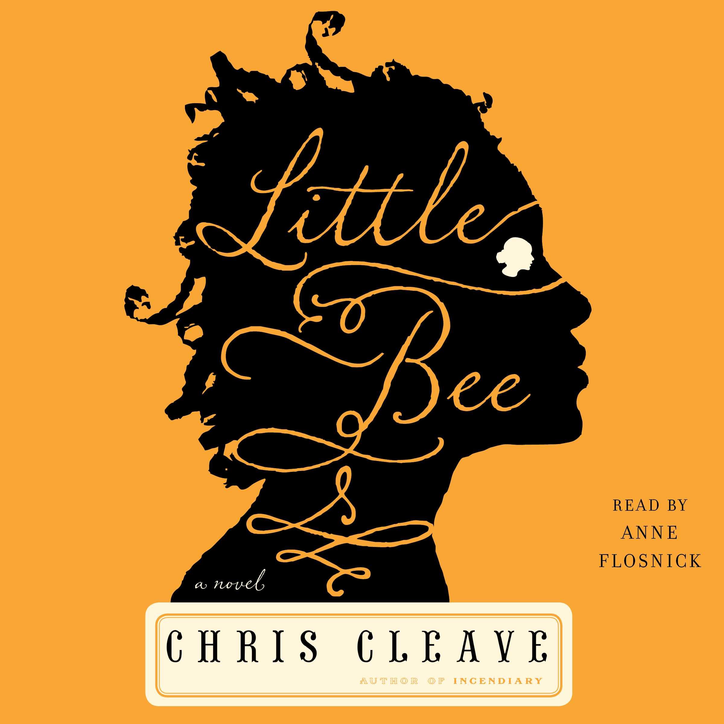 Little bee 9781508223948 hr